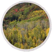 Big Cottonwood Canyon Fall Colors Round Beach Towel