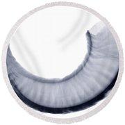 Bighorn Sheep Horn, X-ray Round Beach Towel