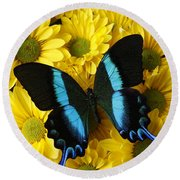 Black And Blue Butterfly Round Beach Towel