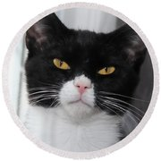 Black And White Cat Round Beach Towel