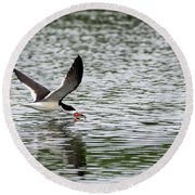 Black Skimmer Fishing Round Beach Towel