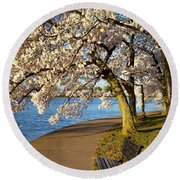 Blossoming Cherry Trees Round Beach Towel