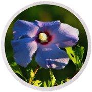 Bluebird Rose Of Sharon Round Beach Towel