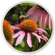 Busy Bees Round Beach Towel