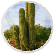 Cactus Monterey California Round Beach Towel