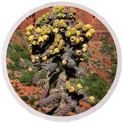 Cactus Outside The Chapel Of The Holy Cross Round Beach Towel