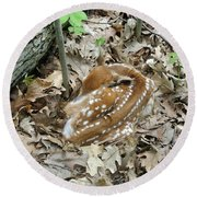 Camouflaged Fawn Round Beach Towel