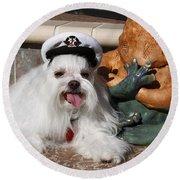 Captain Maltese Dog  Round Beach Towel