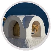 Cat On A Roof, Greece Round Beach Towel