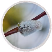 Catkins Round Beach Towel