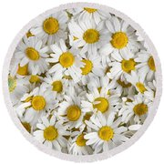 Chamomile Flowers Round Beach Towel