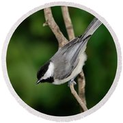 Chickadee Round Beach Towel