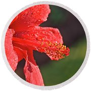 Close Up Of A Red Hibiscus Round Beach Towel