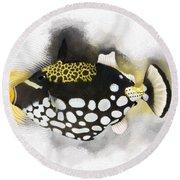 Clown Triggerfish No 01 Round Beach Towel