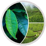 Collage Of  Tea Plantations In Munnar  Round Beach Towel