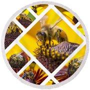 Collage Of Western Honey Bee Round Beach Towel