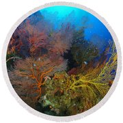 Colorful Assorted Sea Fans And Soft Round Beach Towel