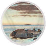 Common Eiders On A Rock Round Beach Towel