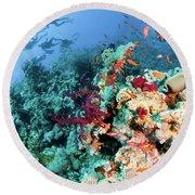 Coral Reef  Round Beach Towel