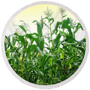 Corn Field Round Beach Towel by Carlos Caetano