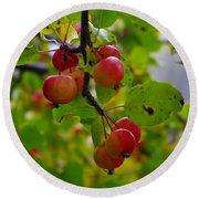 Crab Apples Round Beach Towel
