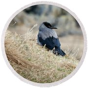 Crow In The Gras Round Beach Towel