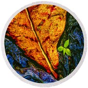 Cycle Of Life Round Beach Towel