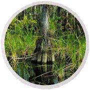 Cypress Tree Round Beach Towel