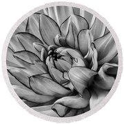 Dahlia In Black And White Close Up Round Beach Towel