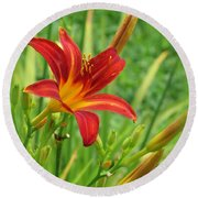 Daylily On Green Round Beach Towel
