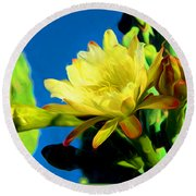 Desert Beauty Round Beach Towel