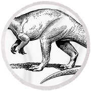 Dinosaur: Allosaurus Round Beach Towel