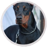 Doberman Pinscher  Round Beach Towel