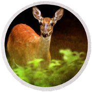 Doe Eyes Round Beach Towel