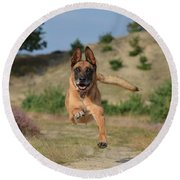 Dog Leaping Round Beach Towel