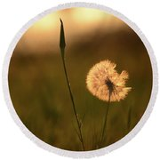 Dream Flower Round Beach Towel