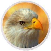 Eagle 10 Round Beach Towel by Marty Koch
