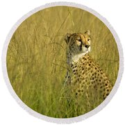 Elegant Cheetah Round Beach Towel