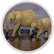 Elephant Crossing Round Beach Towel