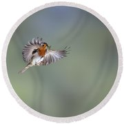 European Robin On The Wing Round Beach Towel
