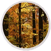 Fall Forest Round Beach Towel