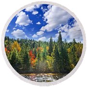 Fall Forest In Sunshine Round Beach Towel