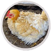 Feathered Finery Round Beach Towel