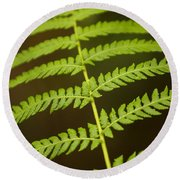 Fern Pattern Round Beach Towel
