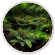 Ferns Of The Forest Round Beach Towel