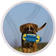 Fetching Boxer Puppy Round Beach Towel
