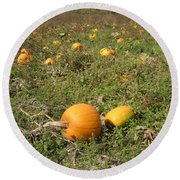Field Of Pumpkins Round Beach Towel