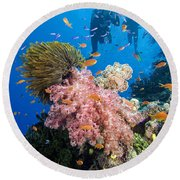 Fiji Underwater Round Beach Towel