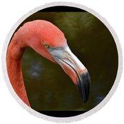 Flamingo Closeup Round Beach Towel