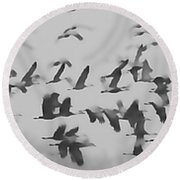 Flight Of The Sandhill Cranes Round Beach Towel